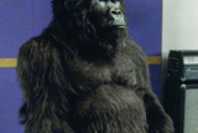 Cadbury's Gorilla ad: Could it have been thought up by sales?