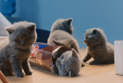 McVities-Ad-web